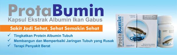 protabumin-kapsul-albumin-ekstrak-ikan-gabus-albumin